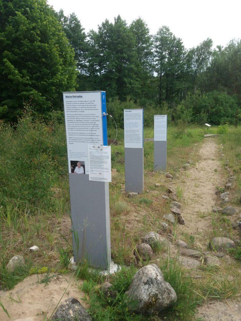 Stelen der neuen Ausstellung auf dem Gedenkort ehemaliges KZ Uckermark an einem Sandweg.